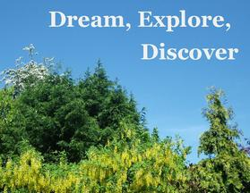 DreamExploreDiscover