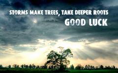 ! deeper-roots