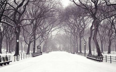 ! 0000 winter