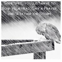 ! Storm 2
